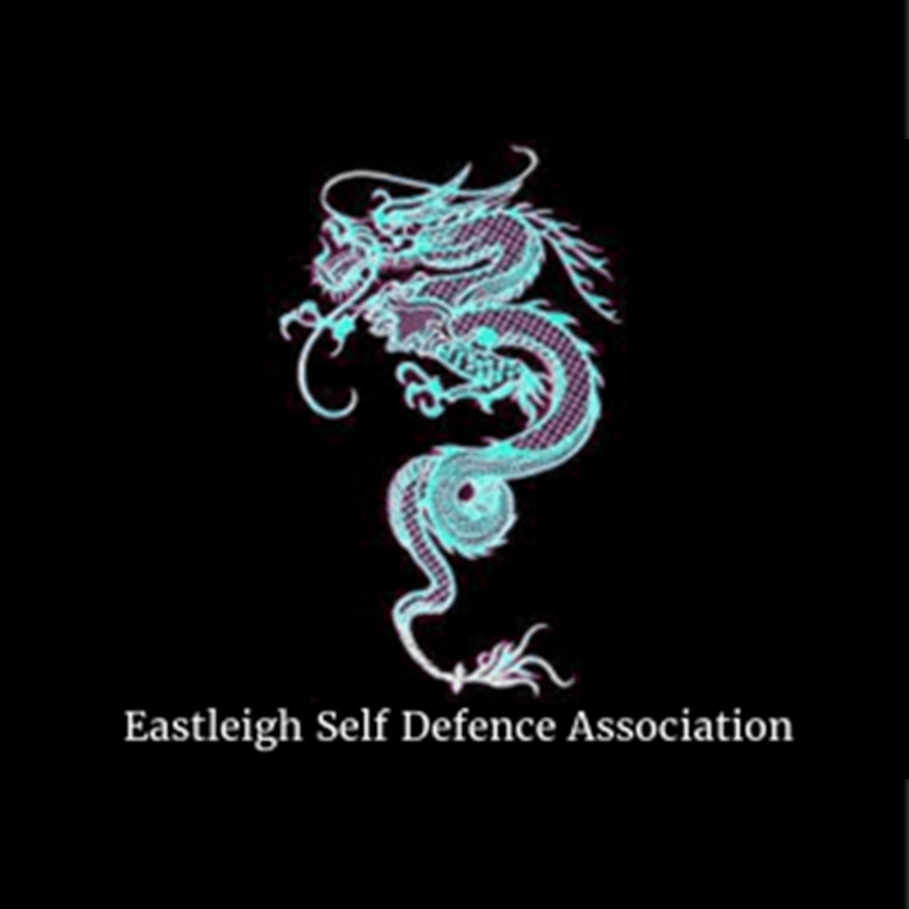 Eastleigh Self Defence Association